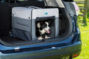 Henry Wag Folding Fabric travel crate
