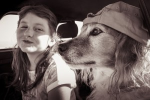 Travels with my dog competition
