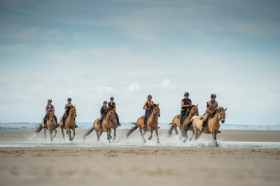 Gallop on the beach with the Henson horses