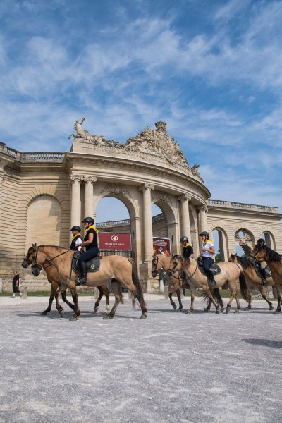 Ride with the Henson horses in front of the living museum of the horse in Chantilly