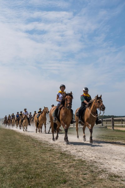 Ride at the Polo-Club - Farm of Apremont with the Henson horses