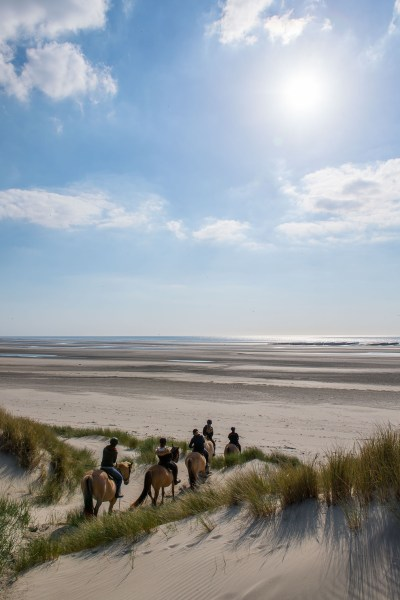Arrival on the beach with the Henson horses