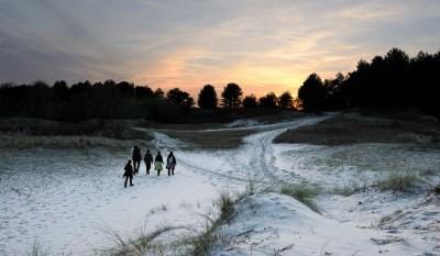 Twilight walk in the Domaine du Marquenterre