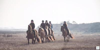 Ride with the Henson horses in winter