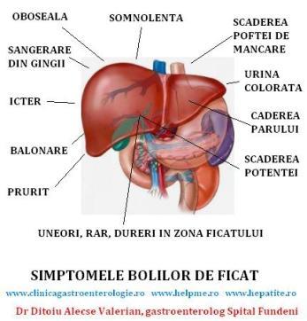 simptomele ficatului bolnav