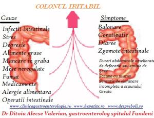 Colonl iritabil , intestin iritat