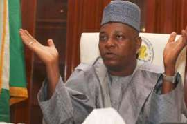Borno Governor, Kashim Shettima