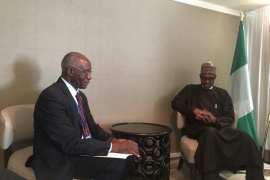 buhari and Toni Iwobi