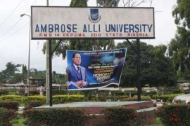 ambrose-alli university