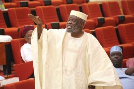 Senate Chief Whip, Olusola-Adeyeye