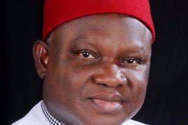 UPP Chairman, Chekwas Okorie