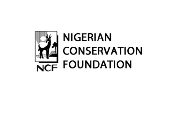 Climate Action: Ncf Holds Tree Planting Rally, Demands Use Of Renewable Energy