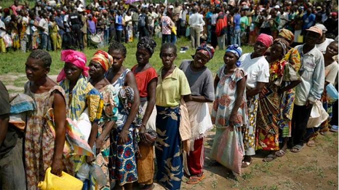 Insurgency: Vsf To Train 1,200 Teachers From Adamawa, Borno, Yobe