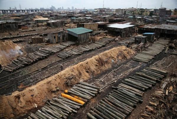 Relocation of okobaba sawmill