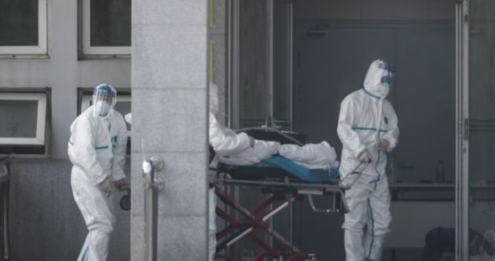 New viral pneumonia rocks Hubei