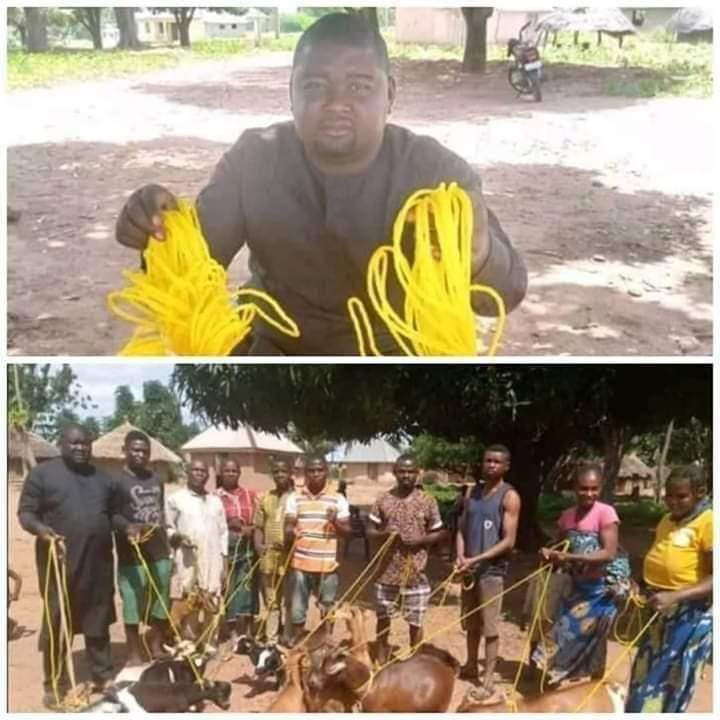 Angry Reactions as Benue Politician donates Ropes for tying goats to Community members tie their goats (Photos)
