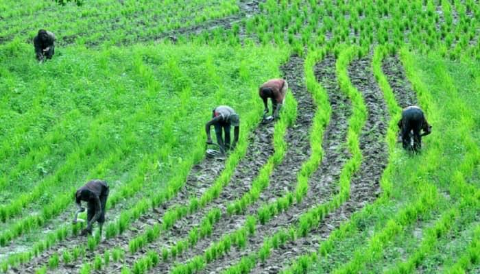 farmers by Atiku