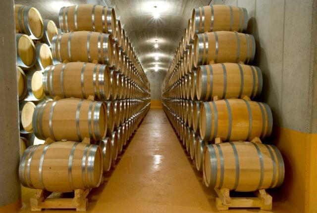 Instalaciones Bodegas y viñedos Heras Cordón