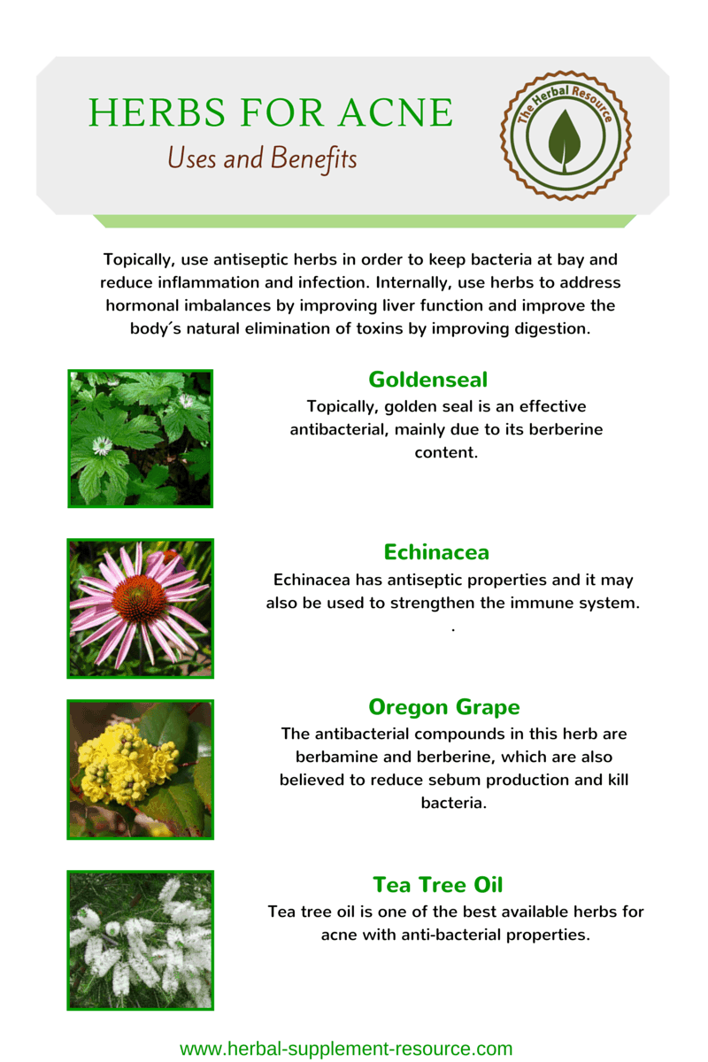 Herbs for Acne - Infographic