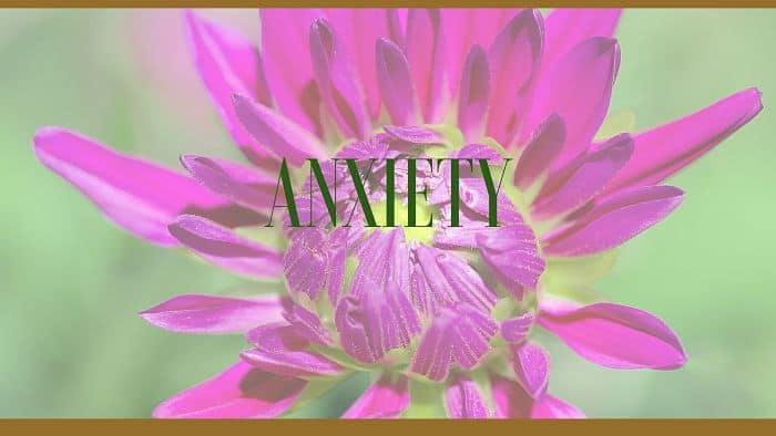 Natural Herbs for Anxiety Treatment