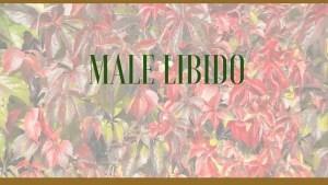 male low libido herbs