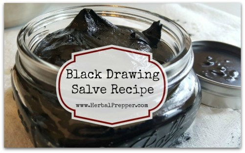 Black Drawing Salve Recipe | Activated Charcoal | Bentonite Clay | Plantain | Bug Bites and Stings | www.HerbalPrepper.com