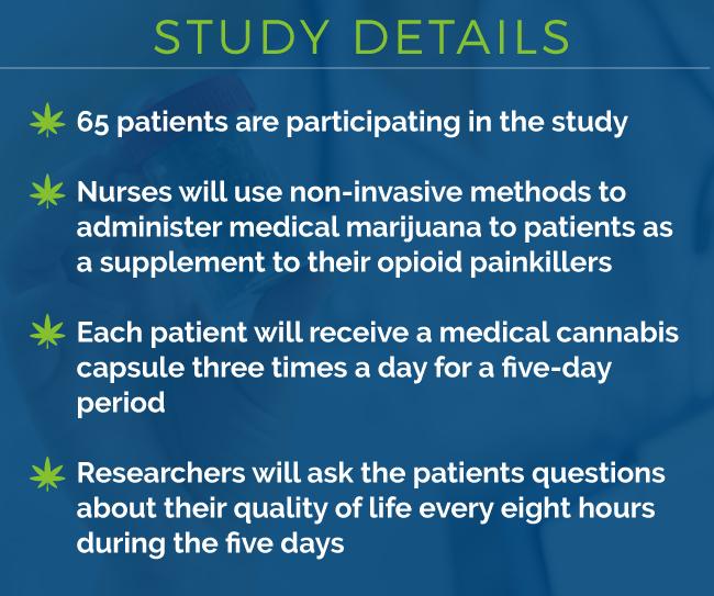 hospice marijuana study