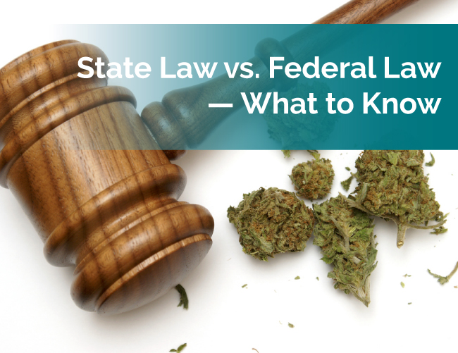 marijuana state and federal laws