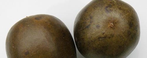Fruit de Siraitia (lo han kuo) – 羅 漢 果