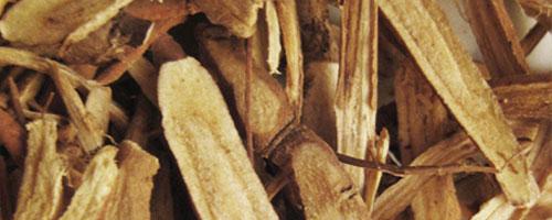 Réglisse (gan cao) – 甘 草