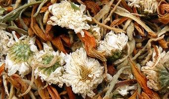 Tisane dépurative – 金 銀 花 清 熱 茶
