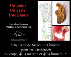 ebook medecine traditionnelle chinoise