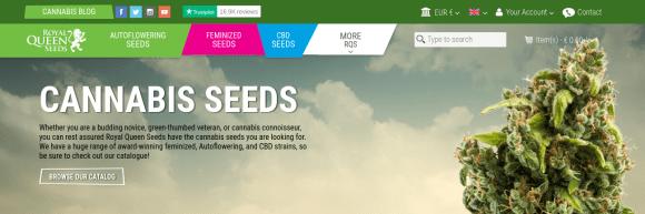 RQS HMx dutch seed banks