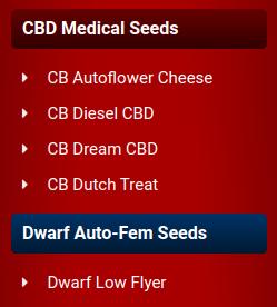 crop king seeds new sidebar strains 3