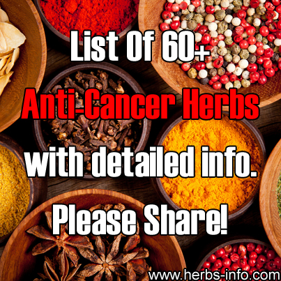 Anti-Cancer Herbs