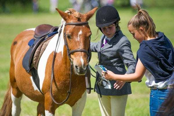 https://i2.wp.com/www.herefordequestrian.co.uk/wp-content/uploads/2017/02/D3S_5042-1.jpg