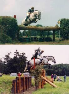 Christine Hardinge eventing stallion Crown Amazonite
