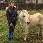 Saffron Cresswell with the 10hh Gypsy pony stallion who is the sire of both Cuffesgrange Little Ric & Cuffesgrange Clover Z