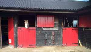 Jessica Kingston-Schleider livery stables
