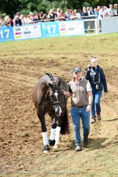 Valegro with Alan Davies and their fans