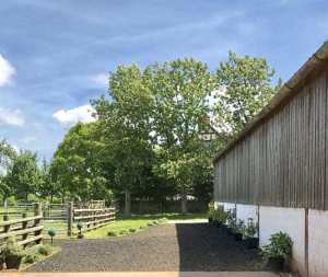 Hall Court Dressage, Ledbury HR8