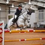 Top Stallions on Show at British Breeding Stallion Event