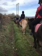 Showell Riding School, Madley, Hereford