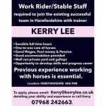 Kerry Lee, Welsh National & Grade 1 winning Racehorse Trainer is Recruiting