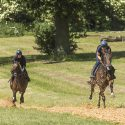 FULL TIME STABLE STAFF REQUIRED FOR FLAT RACING YARD - Ed de Giles Racing