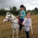 12hh Welsh sec A mare  leading rein / companion pony