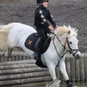 Super Duper - 12.1hh Pony Club Pony