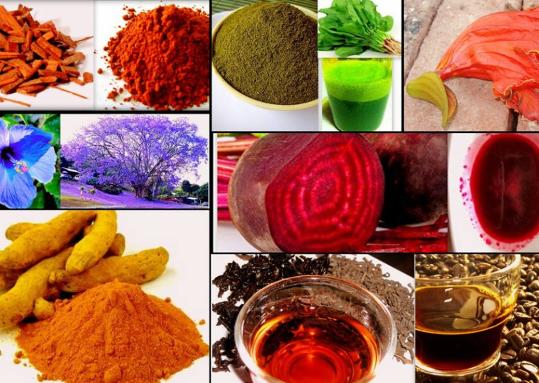 6 How to Make Holi Colours at Home Naturally