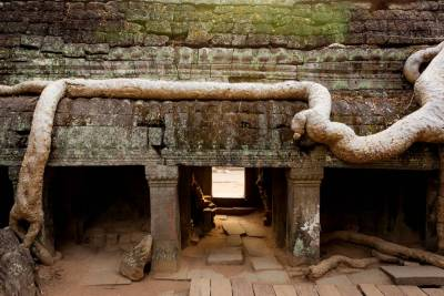 Small Circuit with Ta Prohm