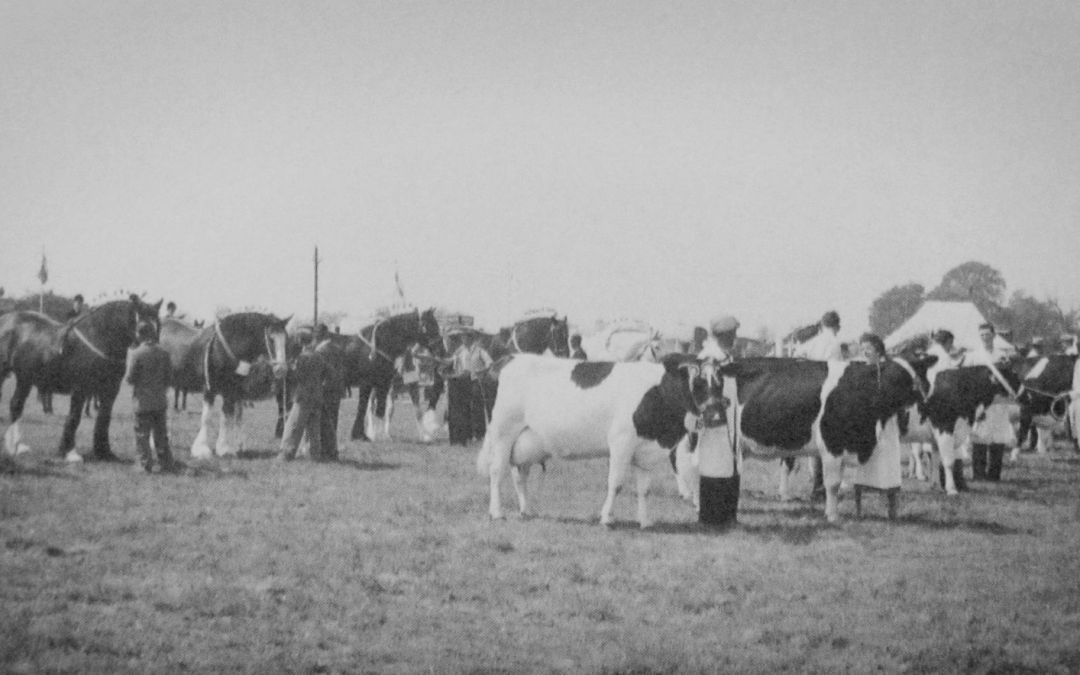Deeping Show 1950's